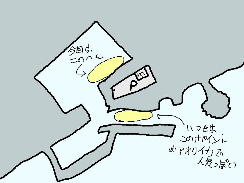 早川港釣りポイント
